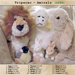 View printable CD cover for album: Aminals
