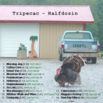 View printable CD cover for album: Halfdosin